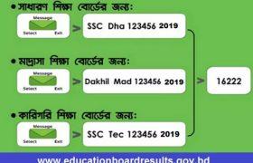 SSC Result 2019 Check by Teletalk